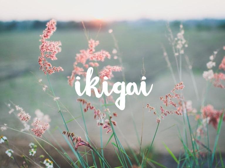 Jouw Ikigai vinden: de reden van je bestaan